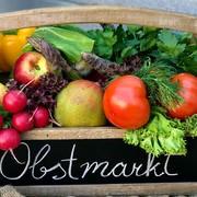 Eine Kiste voll Gesundheit auf Obstmarkt.at