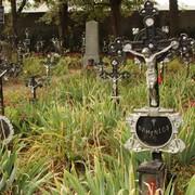 Namenlos aber nicht vergessen – Der Friedhof der Namenlosen