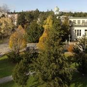 Otto-Wagner-Areal: Grundlagenerhebung für künftige Freiraumgestaltung