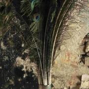 """Kunst Haus Wien: Neue Ausstellung """"Ines Doujak. Landschaftsmalerei"""""""