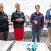 Viennabase19: Neuer Lebensraum für 200.000 Bienen