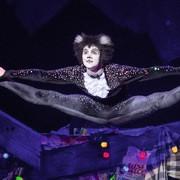Neue VBW-Saison: Raimund Theater-Gala und zwei Musical-Welthits